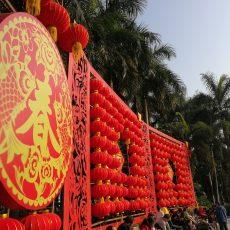 Horóscopo Chino: Descúbrelo e ingresa hoy