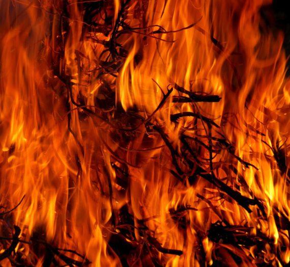 Diferencias entre los signos de Fuego
